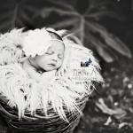photo-bébé-guadeloupe5
